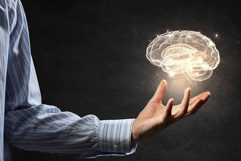 brain hand
