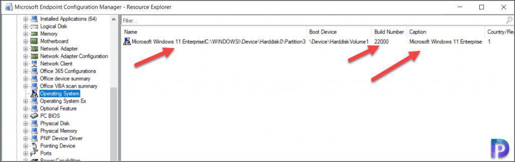 Windows 11 Build Version